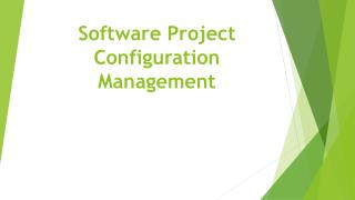 Software Project Configuration Management