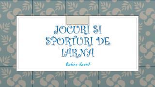 Jocuri si sporturi  de  iarna