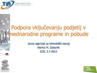 Podpora vključevanju podjetij v mednarodne programe in pobude