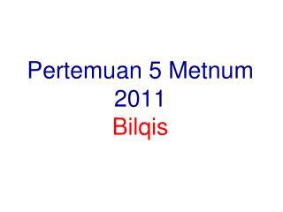 Pertemuan 5 Metnum 2011 Bilqis