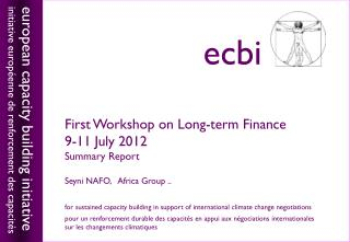 First Workshop on Long-term Finance 9-11 July 2012 Summary Report Seyni  NAFO,   Africa Group ..