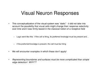 Visual Neuron Responses