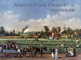Agricultural Changes in the South