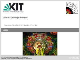 Radiation damage research