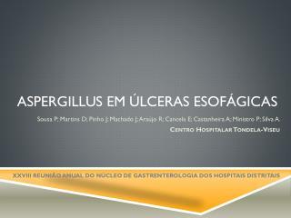 Aspergillus  em úlceras esofágicas