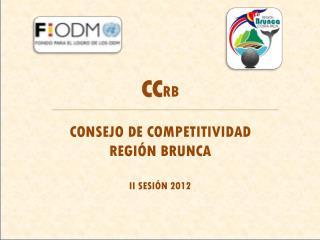 CC RB CONSEJO DE COMPETITIVIDAD  REGI�N BRUNCA II SESI�N 2012