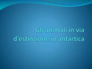 Gli animali  in via d' estinzione  in  antartica