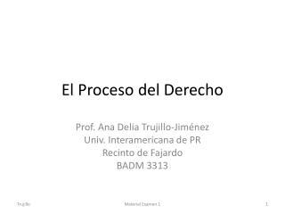 El Proceso del Derecho