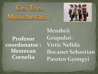 Membrii Grupului :  Virtic Nelida Bocanet  Sebastian Pasztor Gyongyi