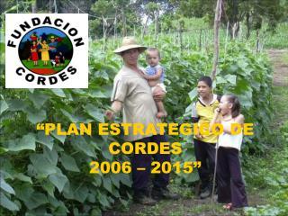 PLAN ESTRATEGICO DE CORDES  2006   2015