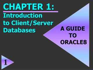 A GUIDE  TO  ORACLE8