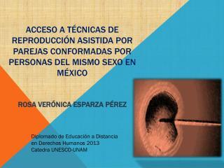 Diplomado de Educación a Distancia  en Derechos Humanos 2013 Catedra UNESCO-UNAM
