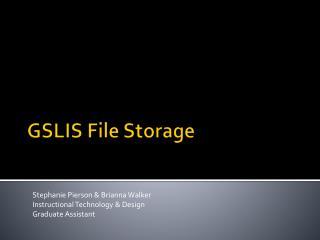 GSLIS File Storage