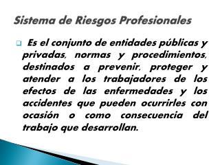 Sistema de  R iesgos Profesionales