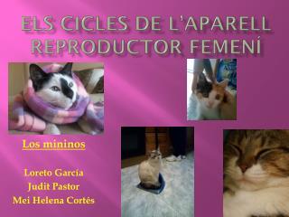 Els cicles de l'aparell reproductor femení
