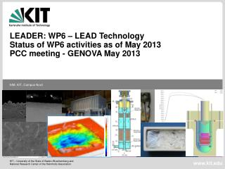LEADER: WP6 – LEAD Technology  Status of WP6 activities as of May 2013