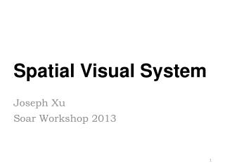 Spatial Visual System