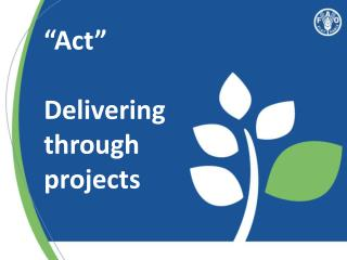 """Act"" Delivering through projects"