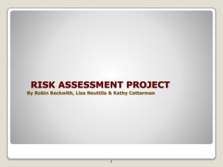 RISK ASSESSMENT PROJECT By Robin Beckwith, Lisa Neuttila & Kathy Cotterman