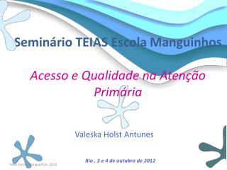 Seminário TEIAS Escola  Manguinhos Acesso e Qualidade na Atenção Primária