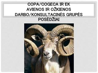 COPA/COGECA  ir  EK  avienos ir  o žkienos  darbo/konsultacinės grupės posėdžiai