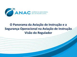 Paulo H. I. Nakamura Paulo.Nakamura@anac.br (21)  3501-5548 Setor de Escolas de Aviação Civil