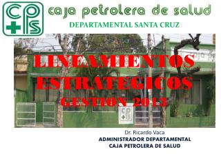 LINEAMIENTOS ESTRATEGICOS  GESTION 2013