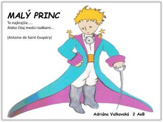 MALÝ PRINC To najkrajšie..... Alebo čítaj medzi riadkami... ( Antoine de Saint-Exupéry )