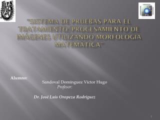 Alumno : Sandoval  Domínguez Víctor  Hugo Profesor: Dr. José Luis Oropeza Rodríguez