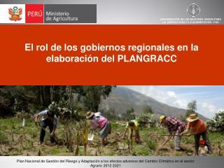 El rol de los gobiernos regionales en la elaboración del PLANGRACC