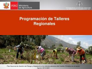 Programación de  Talleres Regionales