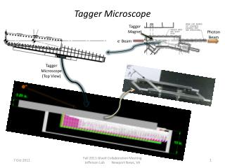 Tagger Microscope