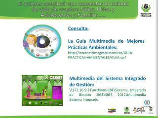 Consulta: La Guía Multimedia de Mejores Prácticas Ambientales: