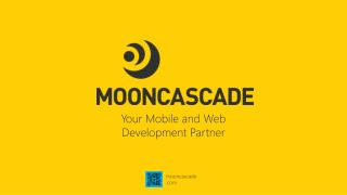 Priit Salumaa Co-founder @Mooncascade Setting up & Delivering Your Project