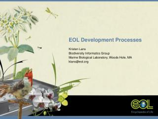 EOL Development Processes Kristen Lans Biodiversity Informatics Group