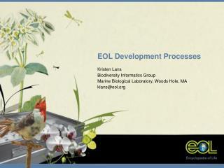 EOL Development Processes Kristen Lans Biodiversity Informatics Group