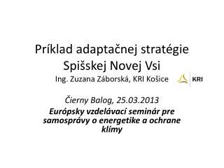 Príklad adaptačnej stratégie Spišskej Novej Vsi Ing. Zuzana  Záborská , KRI Košice