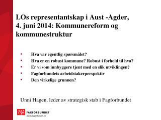 LOs representantskap i Aust  -Agder ,  4. juni 2014: Kommunereform og kommunestruktur