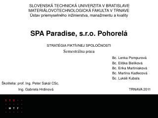 SPA  Paradise , s.r.o. Pohorelá STRATÉGIA FIKTÍVNEJ SPOLOČNOSTI Semestrálna  práca