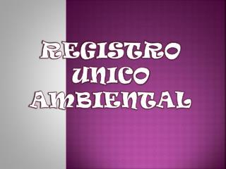 REGISTRO UNICO  AMBIENTAL