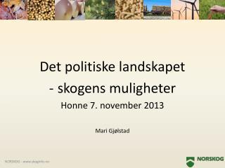 Det politiske landskapet  skogens muligheter Honne 7. november 2013 Mari Gjølstad