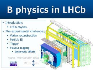 B physics in LHCb