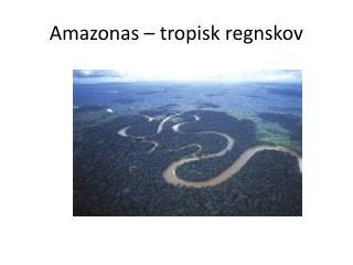 Amazonas – tropisk regnskov