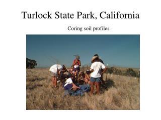 Turlock State Park, California Coring soil profiles