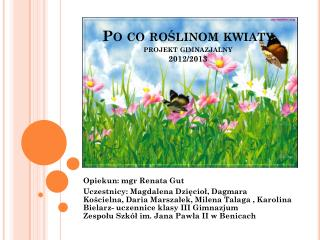 Po co roślinom kwiaty projekt gimnazjalny 2012/2013