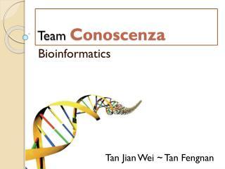 Team  Conoscenza