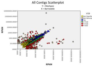 All  Contigs  Scatterplot Y = Mashpee X = Barnstable