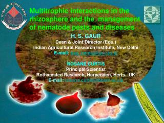 H. S. GAUR Dean  Joint Director Edu. Indian Agricultural Research Institute, New Delhi  E-mail: hsg_nemaiari.res  ROSANE