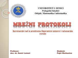 UNIVERZITET U ZENICI Pedagoški fakultet Odsjek: Matematika i informatika
