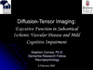 Diffusion-Tensor Imaging:   Executive Function in Subcortical Ischemic Vascular Disease and Mild Cognitive Impairment